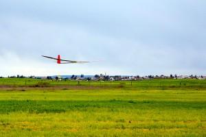 Maxa-F3J-glider-5